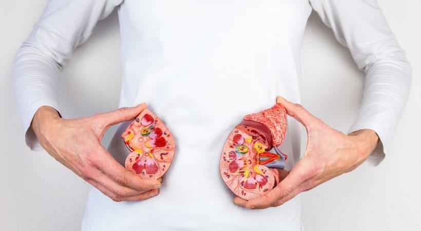 Kidney-failed
